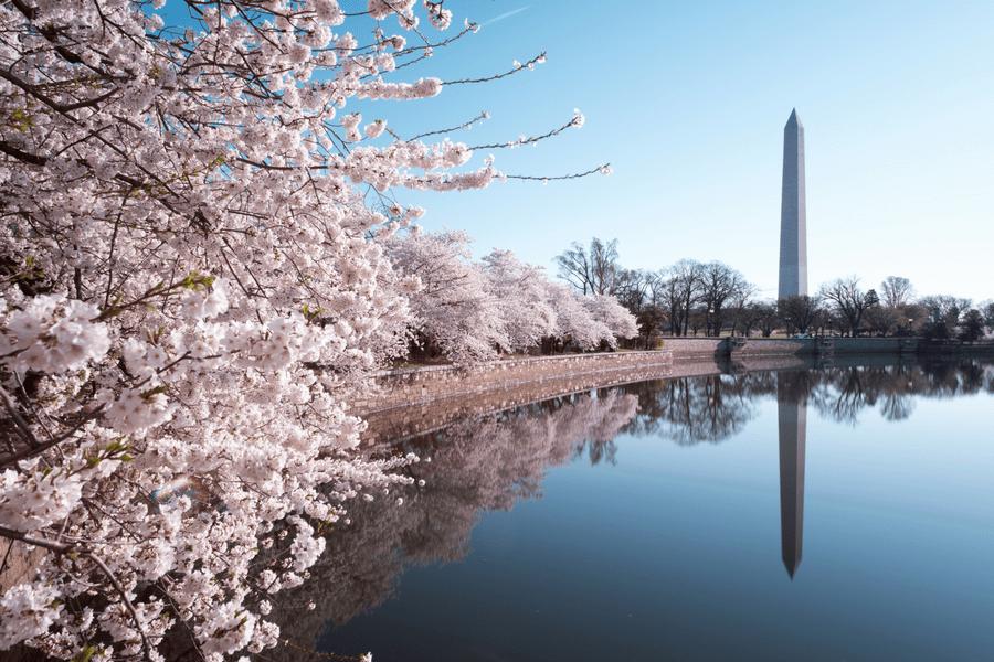 Washington, D.C. Washington Monument