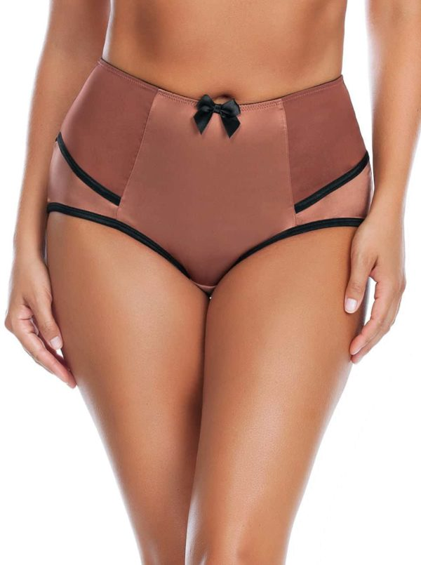 Charlotte HighwaistBrief6917 Bronze Front 600x805 - Charlotte Highwaist Brief Bronze 6917