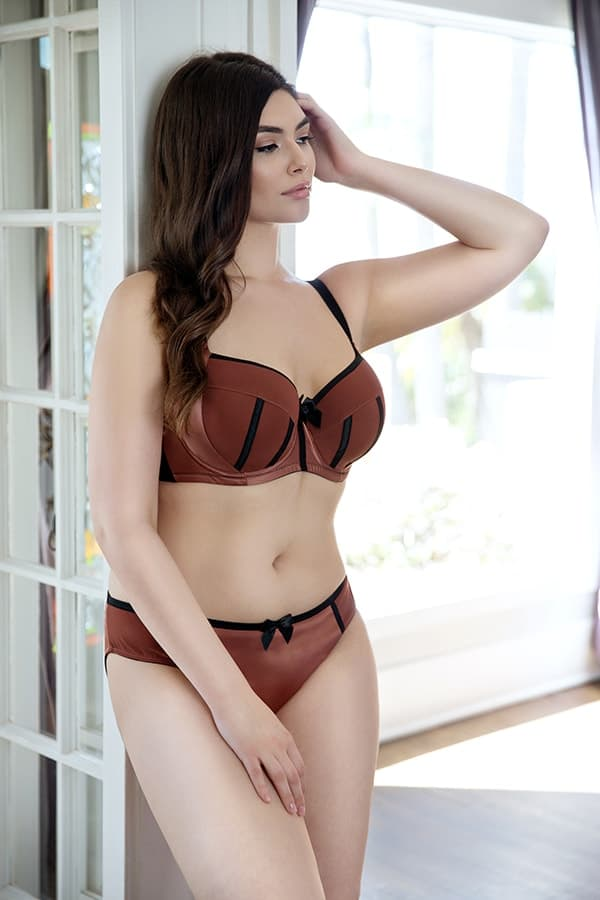 Parfait Charlotte Padded Bra 6901 High Waist Brief 6917 Bronze - How To Wear Sexy Lingerie